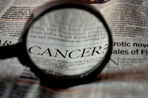 폐암세포 이렇게 성장한다.